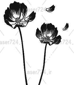 وکنور گل